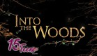 into-the-woods-musical